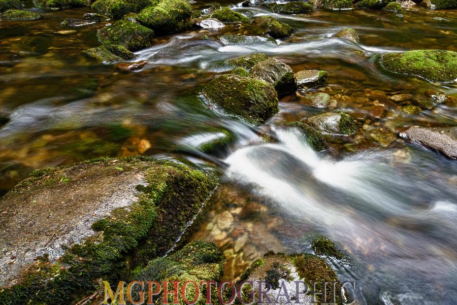MJC_4659
