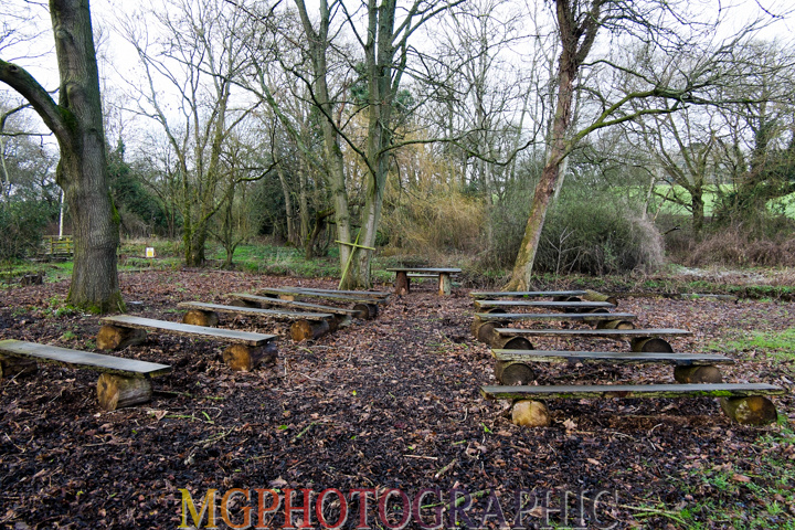 18_Hothorpe Hall and Woodlands